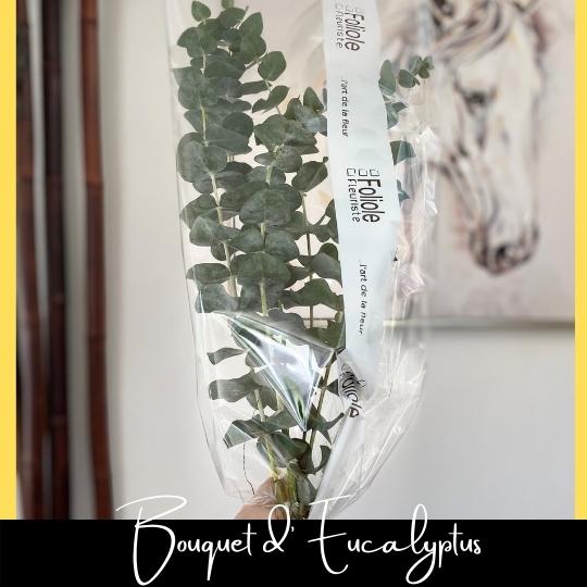 Bouquet d'eucalyptus fleuristefoliole.com