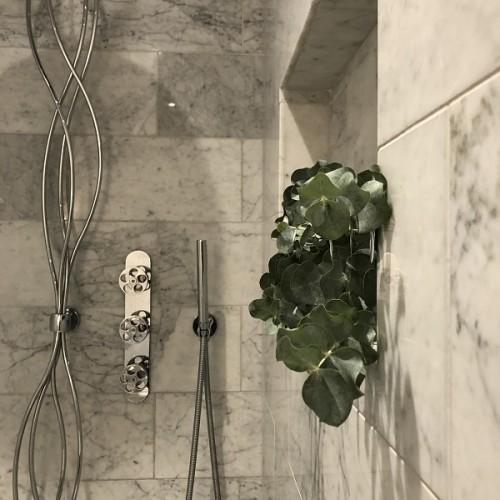 Foliole Bouquet Eucalyptus2