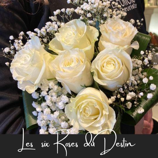 les six roses du destin fleuristefoliole.com