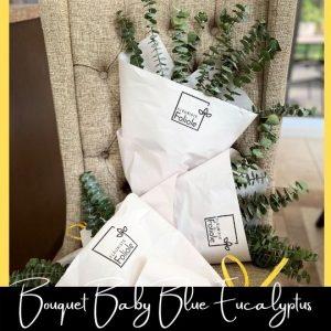 Eucalyptus Baby Blue fleuristefoliole.com