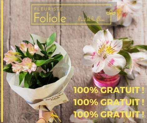 Alstroemeria fleuristefoliole.com